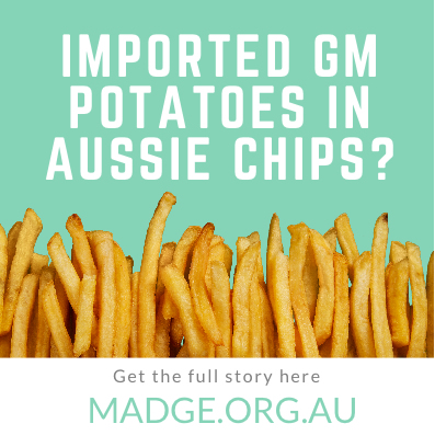 Imported GM potatoes in aussie chips
